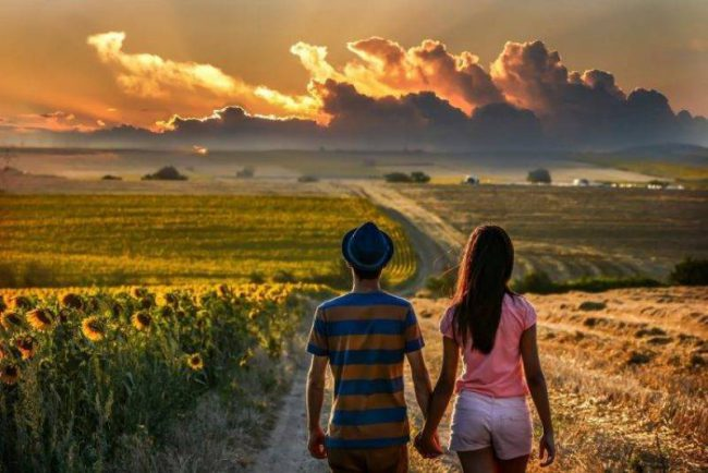 29573-couple-holding_hands-road-field-back-clouds-sunflowers-748x499