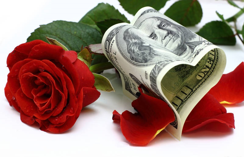 Free picture (Money and flowers) from https://torange.biz/money-flowers-16838