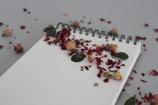 beszéd írás