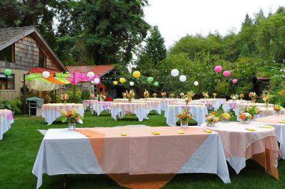 The-Albee-s-Garden-Parties-Olympia-WA-57c20cda-e0e0-4c72-81b8-c56a5ab11f26-97450e389c42885476f1fbe9bc5bca5a